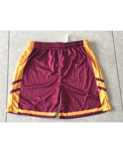 Briars Junior Playing Shorts